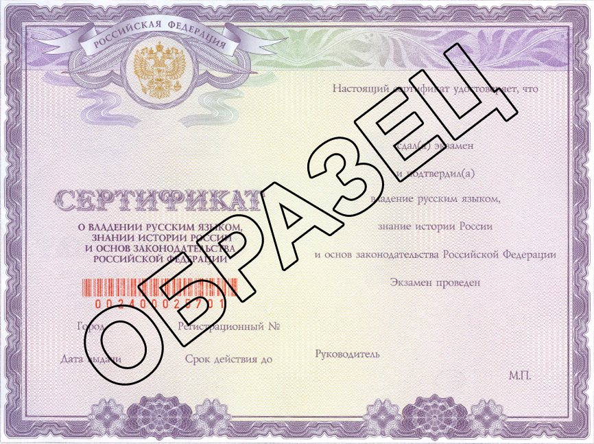 Provided Russian Language Course 60